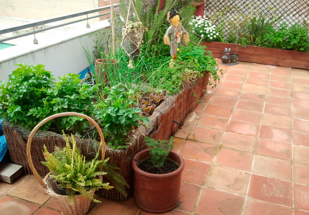 Cómo crear un huerto en tu terraza